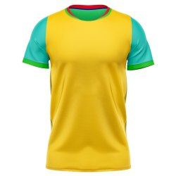 Printed Dry fit Men's Sports T-Shirt