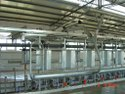 Automation Herringbone Milking Parlour