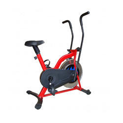 Family Upright Bike