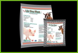 Swine Liver Protective Feed Supplement (Liv Pro Plus)