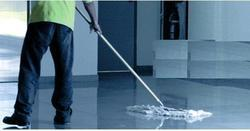 Office Cleaner Services