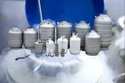 Liquid Nitrogen Can