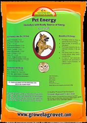 Dog Dehydration Treatment