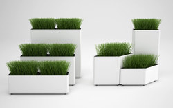 Decorative Planters