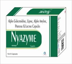 Alpha Galactosidase 150mg Lipase Enzyme 3mg Alpha Amylase 50mg