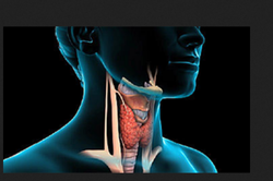 Thyroid Problems Treatment Service