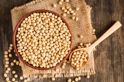 Natural Soybean Seeds, Packaging Size: 50 kg