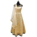 Raw Silk Party Wear Gown And Dupatta