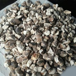 Dried Chestnut, Packaging Size: 50 Kg