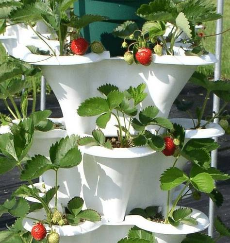 Portable Hydroponics Systems