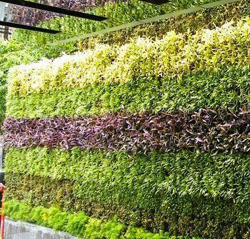 Hotel Vertical Outdoor Wall Garden