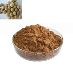 Majuphal Quercus Infectoria Powder