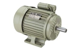 Active 0.25 HP Squirrel Cage Induction Motor, Power: <10 KW, IP Rating: IP55