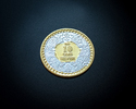 10 Gm. Gold Polish Couple Silver Coin