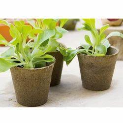 Coco Bio Pots