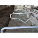Mild Steel Cattle Cubicle