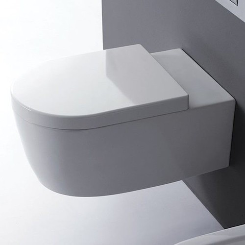 Beau Wall Mounted Water Closet