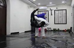 Animal Flow Fitness Training Service