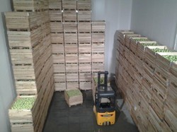 Ulo Storage For Fruit And Other Products