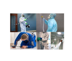 Cockroach Industrial Commercial Pest Control Services