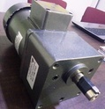 180 Watt Motor with Gear Box
