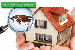Monthly Residential Insects Control Services, Insect Control Services