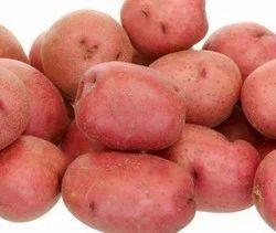 Gujarat LR Potatoes