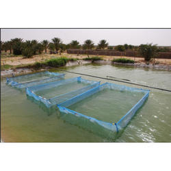 Blue White Hapa Fishing Net