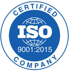 ISO 9001 Consultant, Type of Service Provider Consulting Firm
