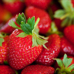 Strawberry Water Soluble Fragrance