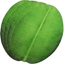 Round Shape Banana Leaves Paper