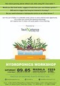 Hydroponics And Aquaponics Workshop