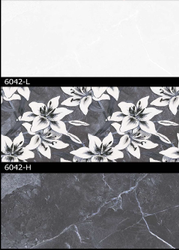 6042 (L, H) Hexa Ceramic Tiles Matt Series