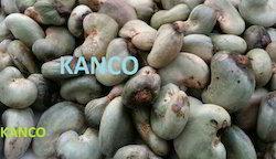 Raw Cashew Nuts in Shell, Packaging Type: Sacks