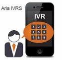 OBD IVRS