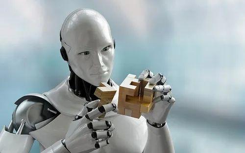 Rs 50000 / 단위의 휴먼 로봇 |  इंटेलीजेंट रोबोट ...