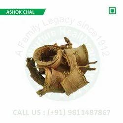 Ashok Chal (Saraca Indica, Polyalthia longifolia, Ashoka Chhal, Ashoka Tree)