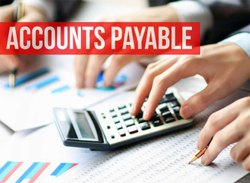 Accounting software services in pune