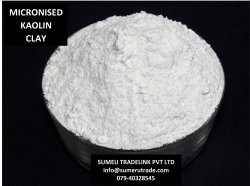 Micronized China Clay 500 Mesh