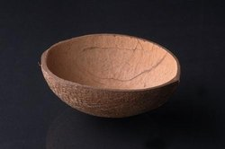 Coconut shell ordinary oval cups