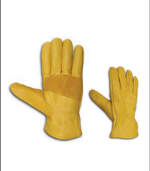 ISP-CN-38 Driving Gloves