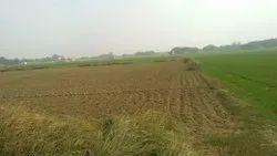 Land 2