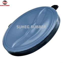 Butterfly Valves Seal