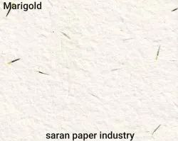 Plantable Marigold  Seed Paper