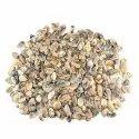 Natural Montana Moss Agate Plain Cabochon