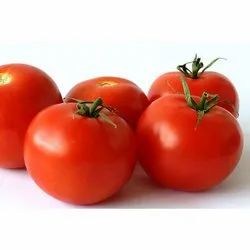 A Grade Fresh Red Tomato, Packaging Size: 5 to 25 Kg, Packaging Type: Net Bag