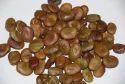 Akshaya Dried Broad Beans Seeds