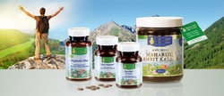 Herbal Food Supplements Testing Services