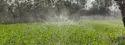 Spray Irrigation System System