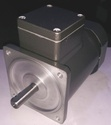 60 Watt In Line Gear Motors